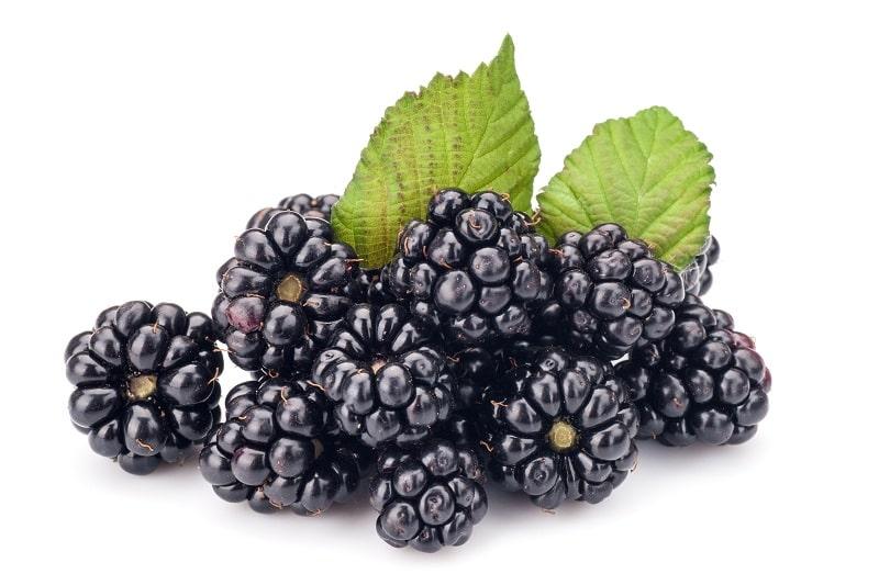 Blackberries, Package